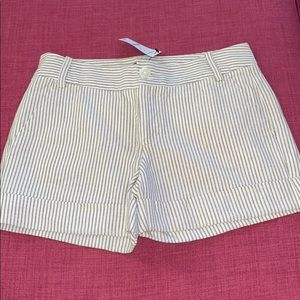 Express Bronze and Cream Shorts with Shine